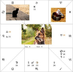 finding lost animals with Astrology s