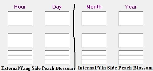 dividing the external and internal side of the BaZi chart according to Peach Blossom